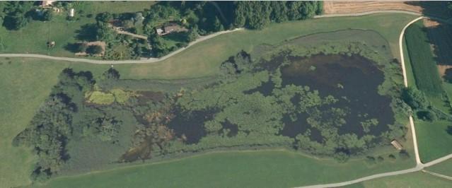 Luftaufnahme Bellacher Weiher 31.10.2009