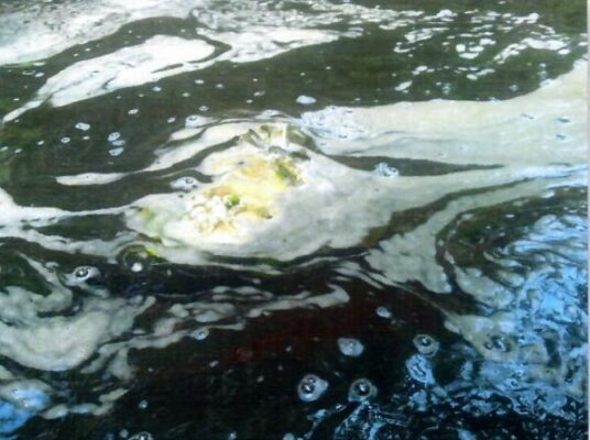 Schlierenbildung an der Wasseroberflaeche 09.07.2010