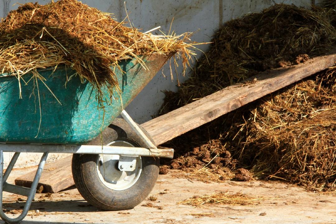Plocher Tipps zur Kompostierung